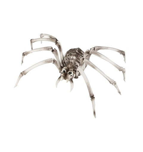 Araña Esqueleto 82 x 48 x...