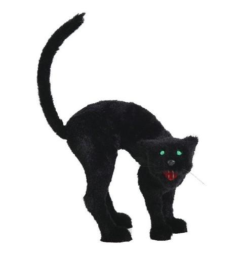 Gato Scary Grande