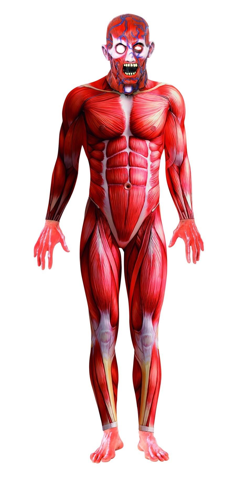 Disfraz Mono Anatomía Humana Adulto T-42/44 - MiDisfraz