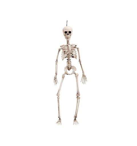 Esqueleto Entero 90 cm