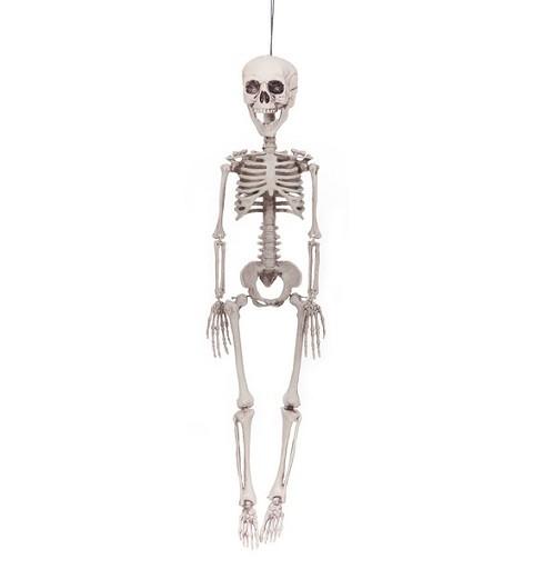 Esqueleto 76 cm