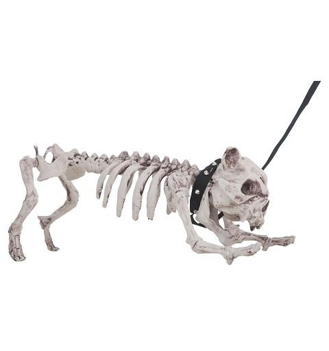 Esqueleto Perro 60 cm