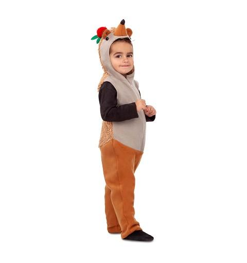 Disfraz de Erizo para Niño
