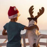 Baratos Navidad